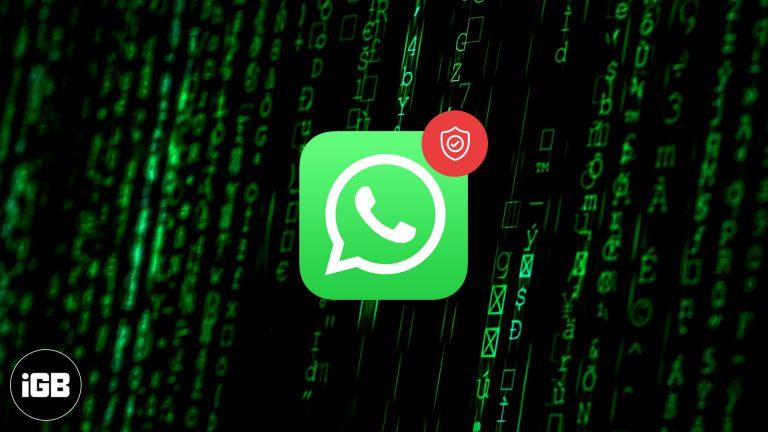Новая политика конфиденциальности WhatsApp 2021: ответы на все ваши вопросы