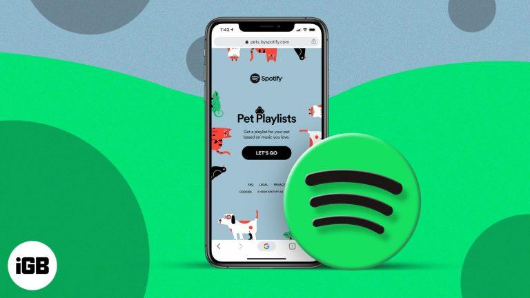 Как создать плейлист с домашними животными на Spotify для собак, кошек и т. Д.