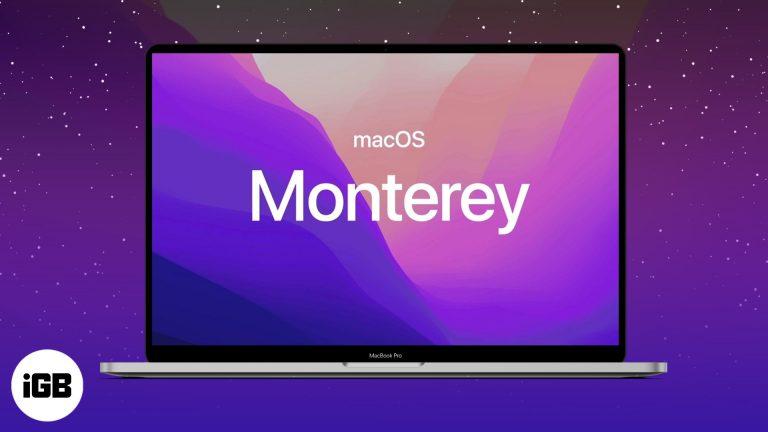 Как скачать бета-версию для разработчиков macOS Monterey на Mac